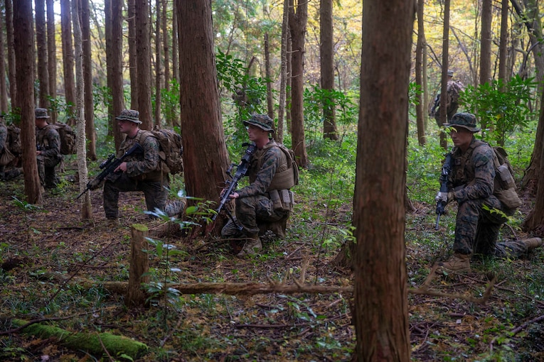 Marines kneel in a wooded area.