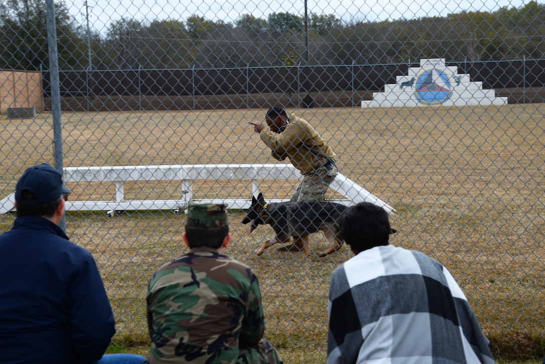 Senior Airman Anthony Story, 14th Security Forces Squadron Military Working Dog handler, shows training techniques for his working dog to Retiree Appreciation Day guests Nov. 14, 2019, on Columbus Air Force Base, Miss. The handlers shared the everyday life of an MWD to include deployed life and talked about the dogs' roles such as tracking, search and rescue or bomb detection. (U.S. Air Force photo by Airman 1st Class Jake Jacobsen)