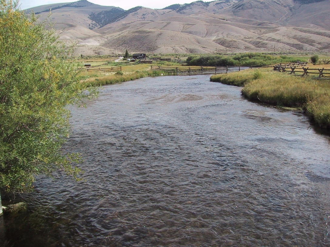 A multi-year improvement project on the Lemhi River in southeast Idaho included water transactions, land acquisition and habitat restoration.