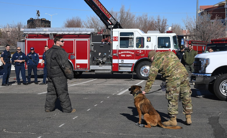 Photo of military working dog doing a demonstration.