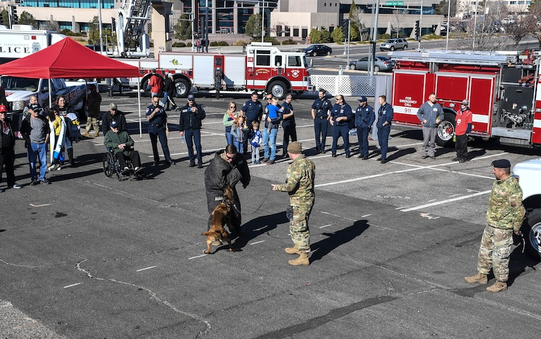 Photo of a military working dog doing a demonstration.