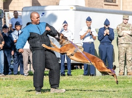U.S. Air Force Staff Sgt. Jerry Jasmin, 60th Security Forces Squadron military working dog handler, works with Aarapaho during a demonstration Nov. 21, 2019, Travis Air Force Base, California. Travis AFB hosted Junior Reserve Officer Training Corps students from five Northern California high schools and one Oregon high school. The students learned about various U.S. Air Force career fields and toured static aircraft, the Heritage Center museum and dormitories. They also talked with Airmen about military life. (U.S. Air Force photo by Heide Couch)