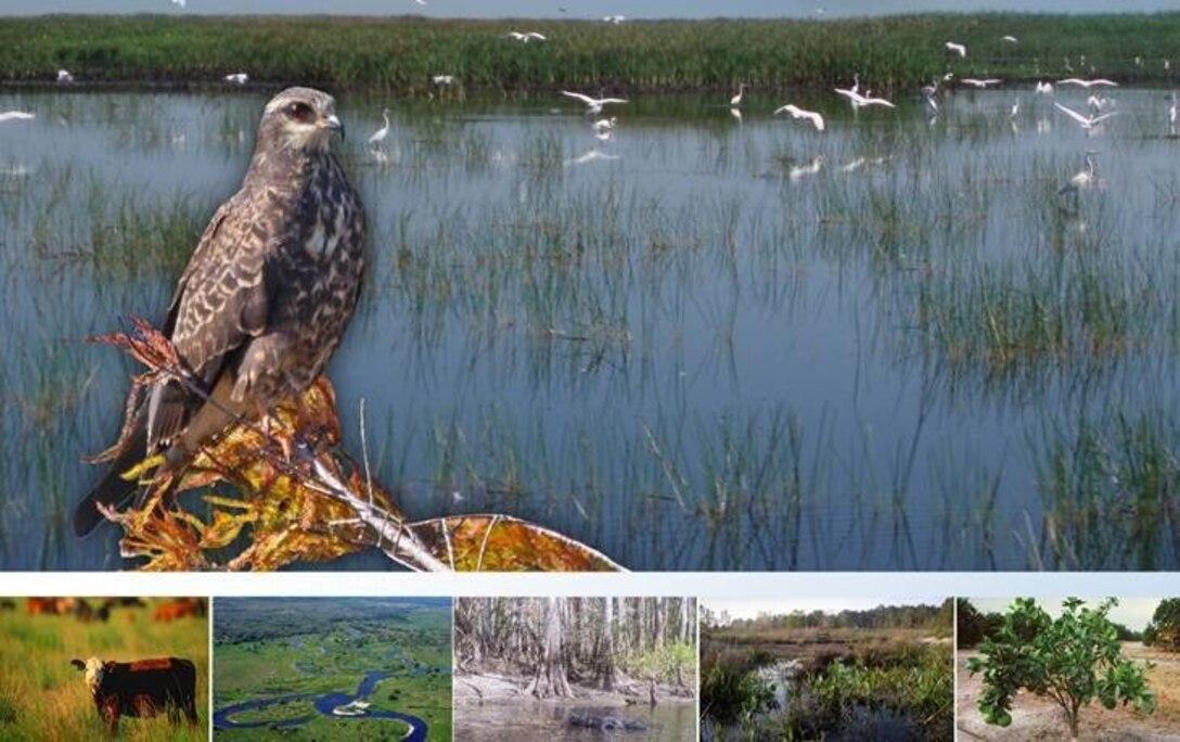 Lake Okeechobee Watershed Restoration Project