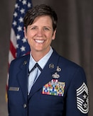 Command Chief Master Sgt. Lisa Perry's Official Photo