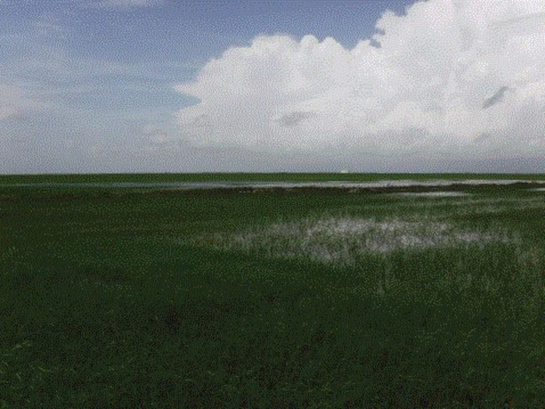 Central Everglades Planning Project - Everglades
