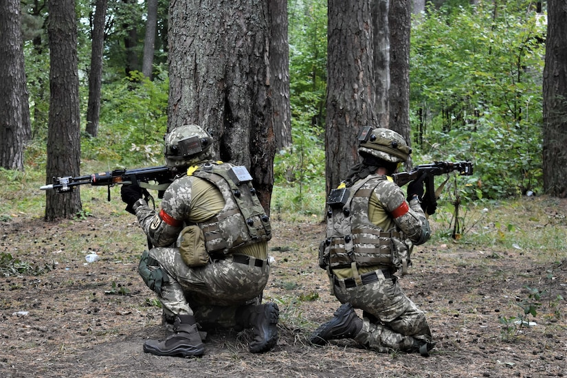 Two soldiers in crouch in a wooded area. Facing away from each other, they aim their rifles.