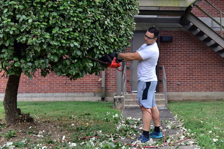 A guy trims a tree