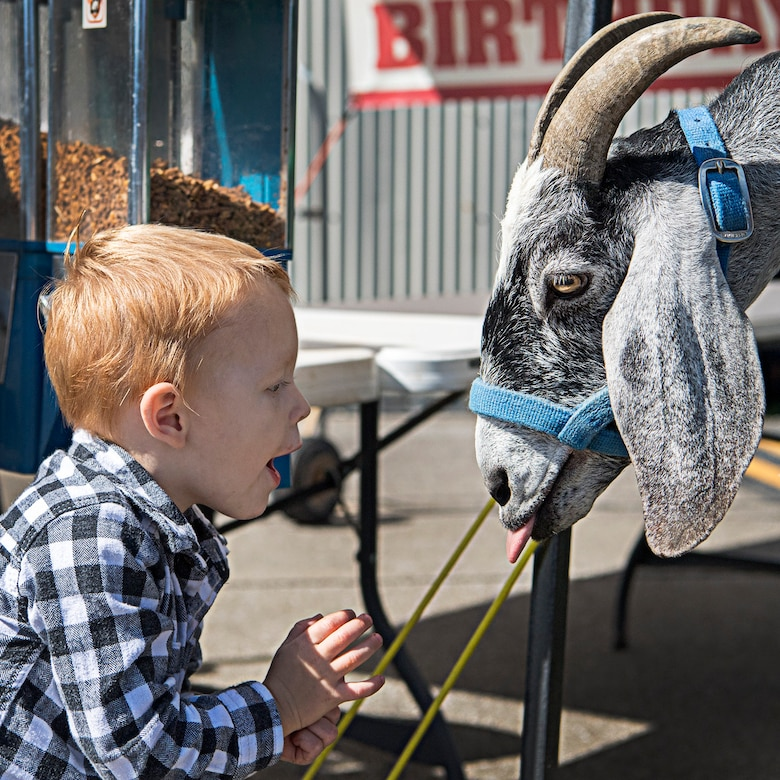 Austin Zaremba, son of Tech. Sgt. Anna Zaremba, 434th Aerospace Medicine Squadron, tries talking to a goat Oct. 5, 2019 during a fall festival at Grissom Air Reserve Base, Indiana. The festival gave unit members and their families an opportunity to throttle back after a busy year of deployments, exercises, inspections and an airshow. (U.S. Air Force photo/Douglas Hays)