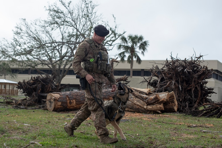 U.S. Air Force Staff Sgt. Matthew Gluvas, 99th Security Forces Squadron, Nellis Air Force Base, Nev., military working dog handler, walk with Alfi, 99th SFS military working dog, before going on patrol at Tyndall Air Force Base, Fla., Feb. 21, 2019. Gluvas has been on temporary duty at Tyndall since Oct. 31 assisting with the aftermath of Hurricane Michael. (U.S. Air Force photo by Senior Airman Javier Alvarez)