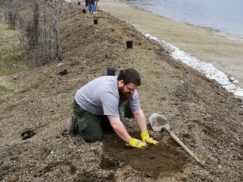 Natural Resource Specialist Kyle Mundy plants a Red Osier Dogwood on the bank for stabilization.