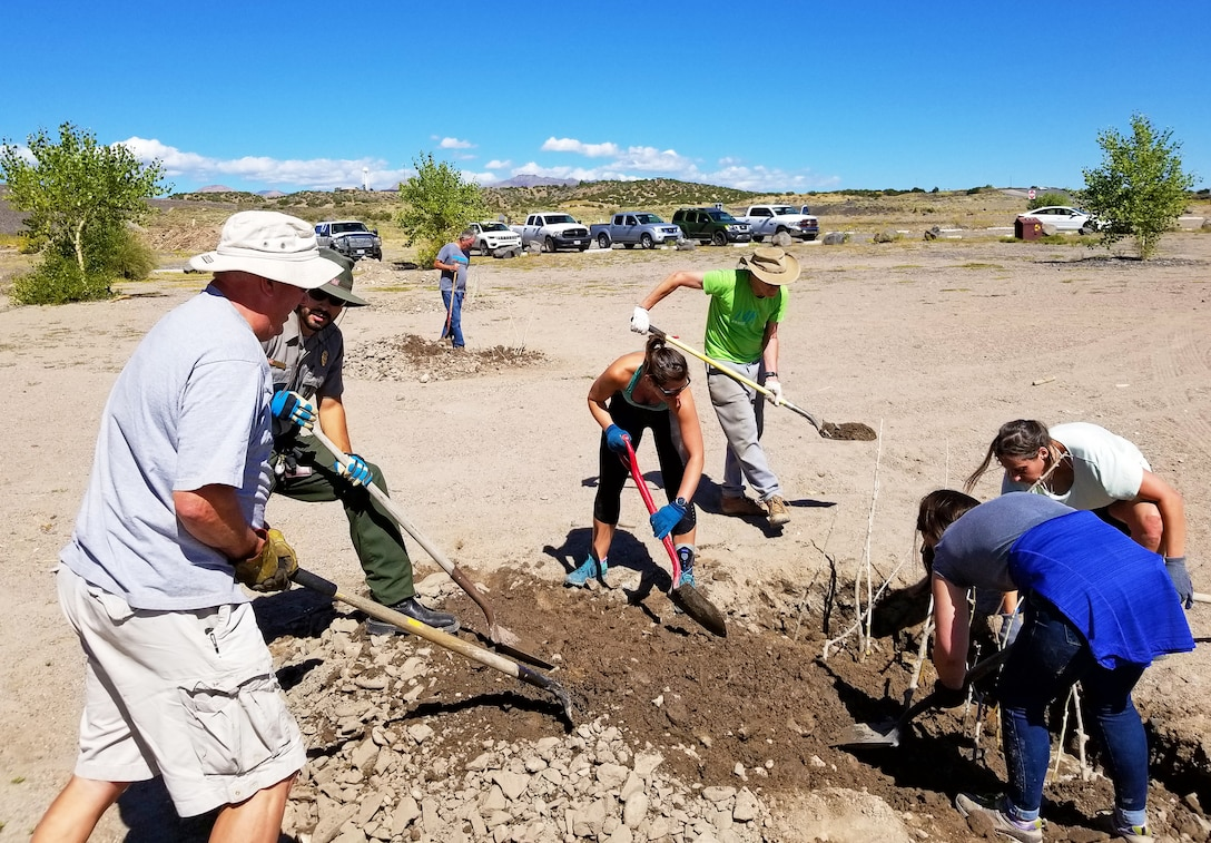 Volunteers plant cottonwood poles near the swim beach at Cochiti Lake, during National Public Lands Day, Sept. 28, 2019.