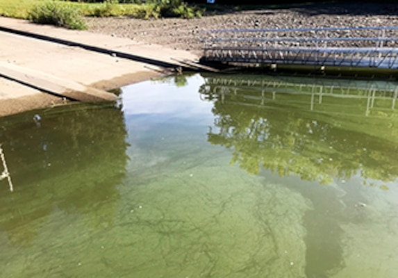 April showers might have brought May flowers, but this summer's warm weather brought a different kind of bloom to reservoirs. The Pittsburgh District environmental team focused its efforts to identify harmful algae blooms and conducted testing throughout the Mahoning River Watershed.