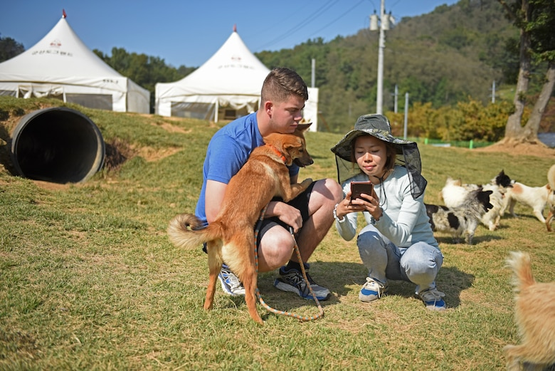 Airman 1st Class Anthony Bell, a Dog Land Outreach volunteer, communicates with a Gunsan Dog Land employee through a translation application during a volunteer event in at the sanctuary in Gunsan, Republic of Korea, Oct. 20, 2019. Despite the language barrier, Dog Land Outreach volunteers have been able to build lasting connections with the Gunsan community while volunteering to help care for more than 600 animals. (U.S. Air Force photo by Staff Sgt. Mackenzie Mendez)