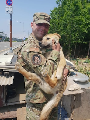 "Master Sgt. Mason Bergeron, 8th Operations Support Squadron aircraft flight equipment flight chief and Dog Land Outreach president, rescues one of the ""garden pups"" with help from Lee, Jung-Ho, Gunsan Dog Land director, in Gunsan, Republic of Korea. Bergeron has recruited more than 150 active duty military members to volunteer at Gunsan Dog Land since arriving at Kunsan Air Base in March 2019. (Courtesy Photo)"