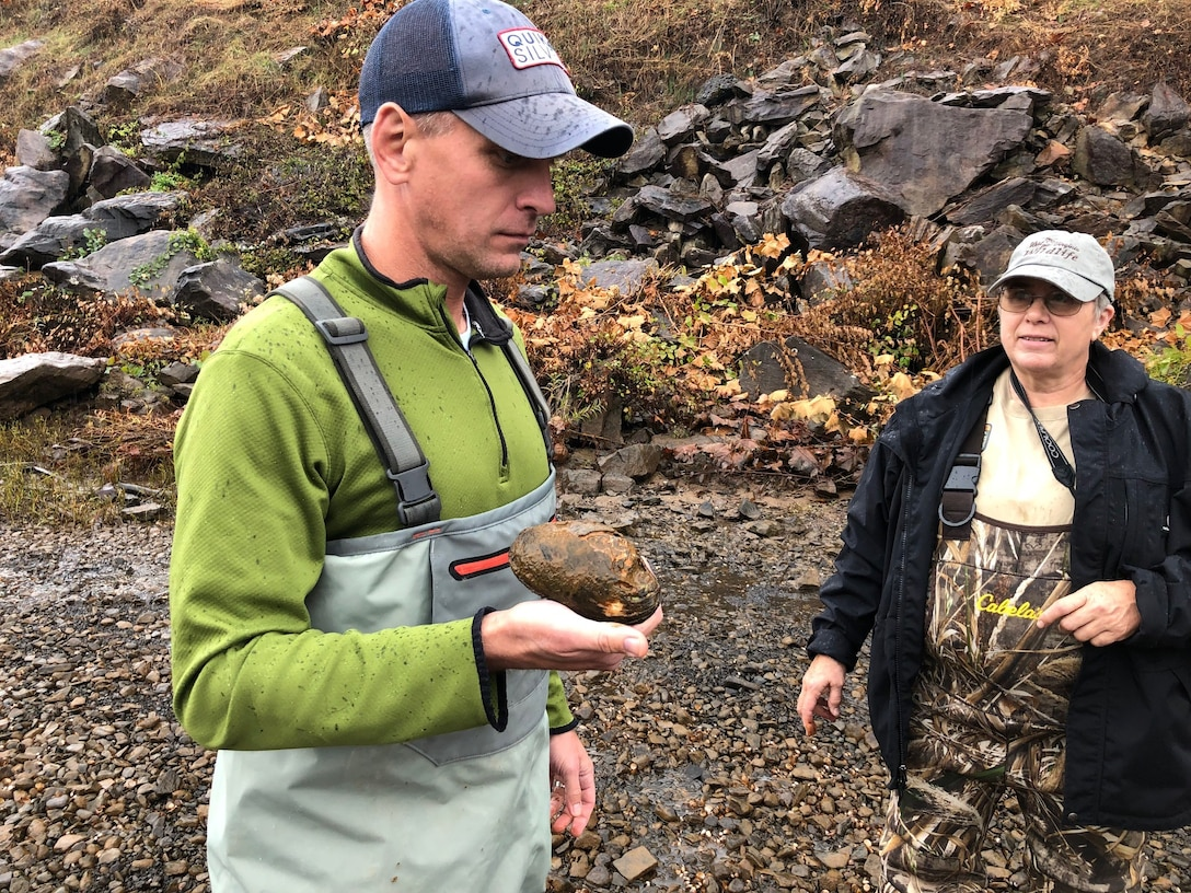 Andrew Johnson relocates a plain pocketbook mussel that was stranded as a result of the receding waters downstream.