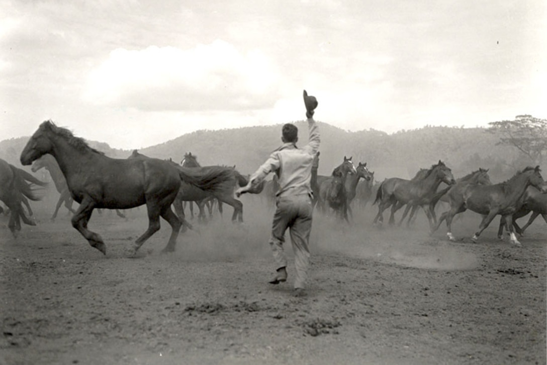 A soldier waves his hat as he chases horses.