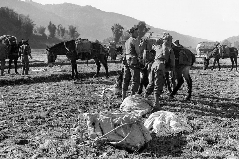 Soldiers load wooden crates onto mules.
