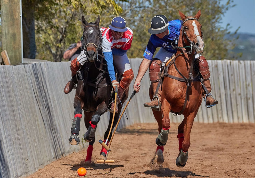 AF takes polo title