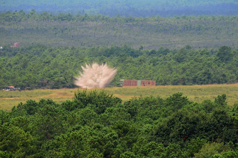A picture of A 500 lb. inert BDU-50 practice bomb, released from a 177th Fighter Wing F-16C Fighting Falcon impacts a target at the Warren Grove Bombing Range in Ocean County, N.J.