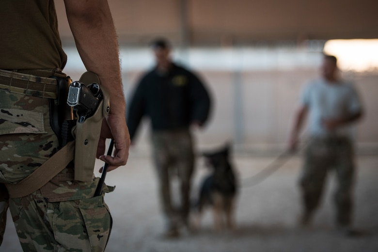Military working dog stands with handler during tactics demonstration.