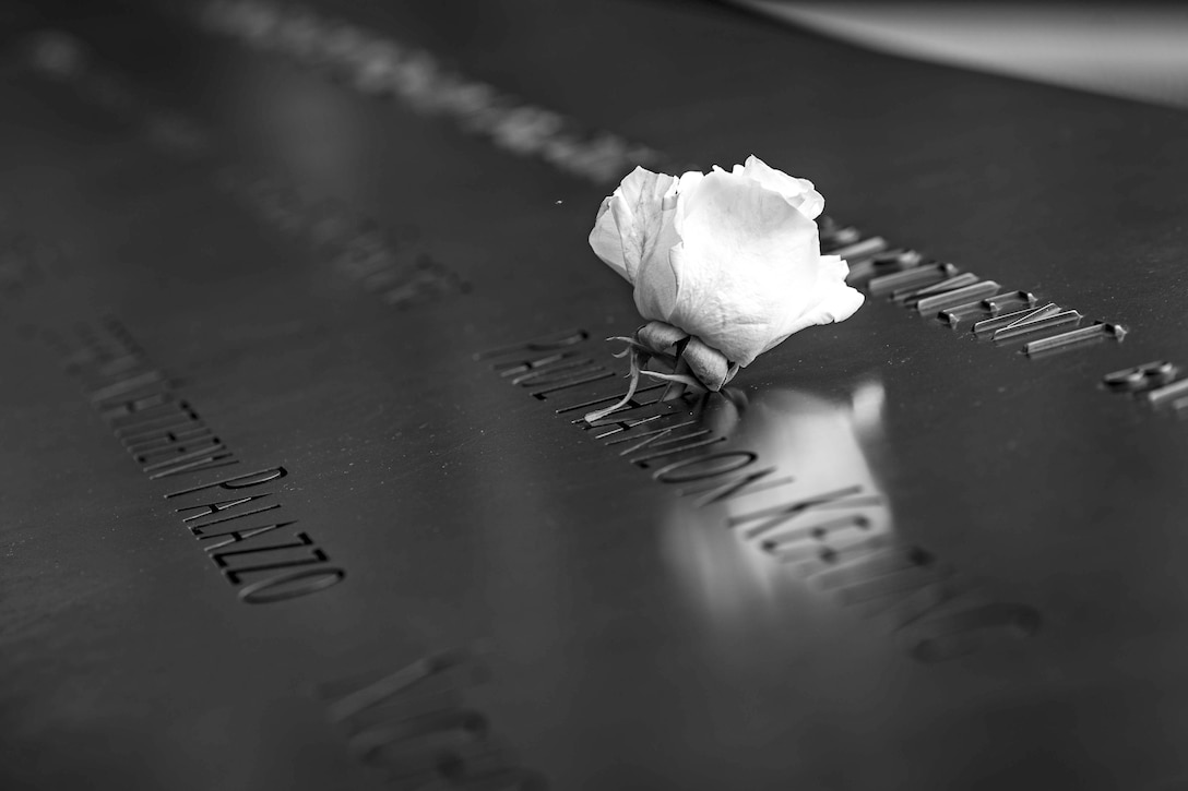 A white rose sits in a letter in a name carved into a memorial.