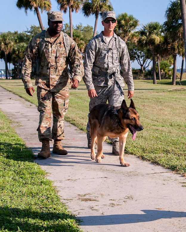 Service members from MacDill Air Force Base, Fla., ruck march with a Military Working Dog, Sept. 11, 2019.