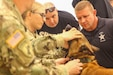 U.S. Army veterinarians work with various law enforcement agencies to show tactical emergency care for their canine partners during a K9 Tactical Emergency Casualty Care course hosted by the U.S. Army Reserve's 350th Civil Affairs Command,in Pensacola, Fla. on Sept. 6.