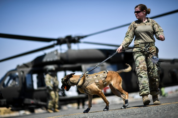 U.S. Navy Master-at-Arms 2nd Class Brianna Flores, Area Support Group Kuwait – Directorate of Emergency Services – K-9 Unit military working dog handler, comforts her military working dog after boarding a UH-60 Black Hawk helicopter at Ali Al Salem Air Base, Kuwait, Sept. 13, 2019. As part of the exercise, U.S. Army veterinary doctors worked with emergency medical responders sharing life-saving measures for MWDs in case of extreme emergencies where veterinary technicians might not be immediately available. (U.S. Air Force photo by Staff Sgt. Mozer O. Da Cunha)