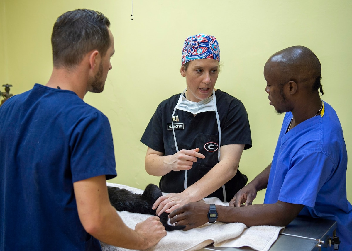 A veterinarian talks with students prior to a surgery.