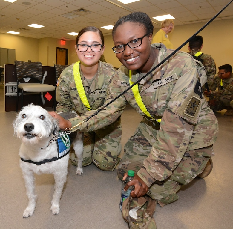 Two Soldiers pose for a photo with a working therapy dog brought by Paws 4 Hearts volunteers.