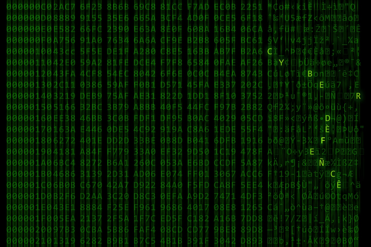 "Green letters scroll on a computer screen, leaving a blur.  The letters ""C Y B E R F L A G 19-1"" are in bold."
