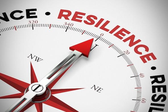 Resilience / resilience as physical resilience as a concept on a