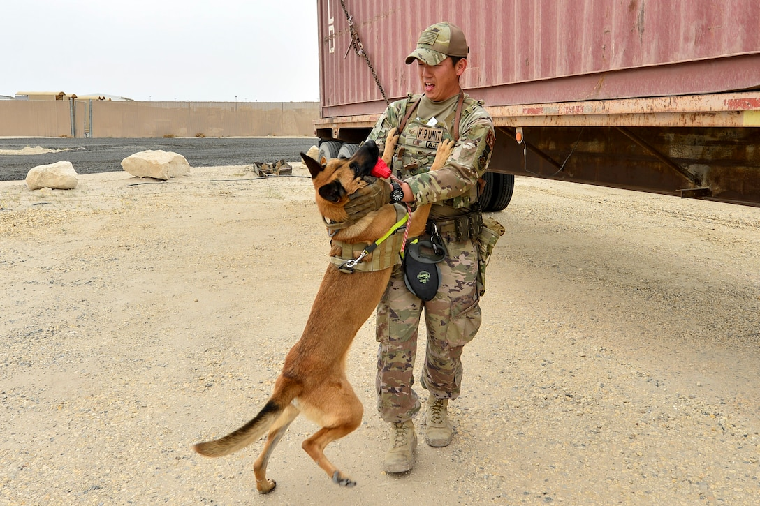 A dog holding a red toy in its mouth stands on its hind legs and puts its front paws on the chest of a smiling airman.