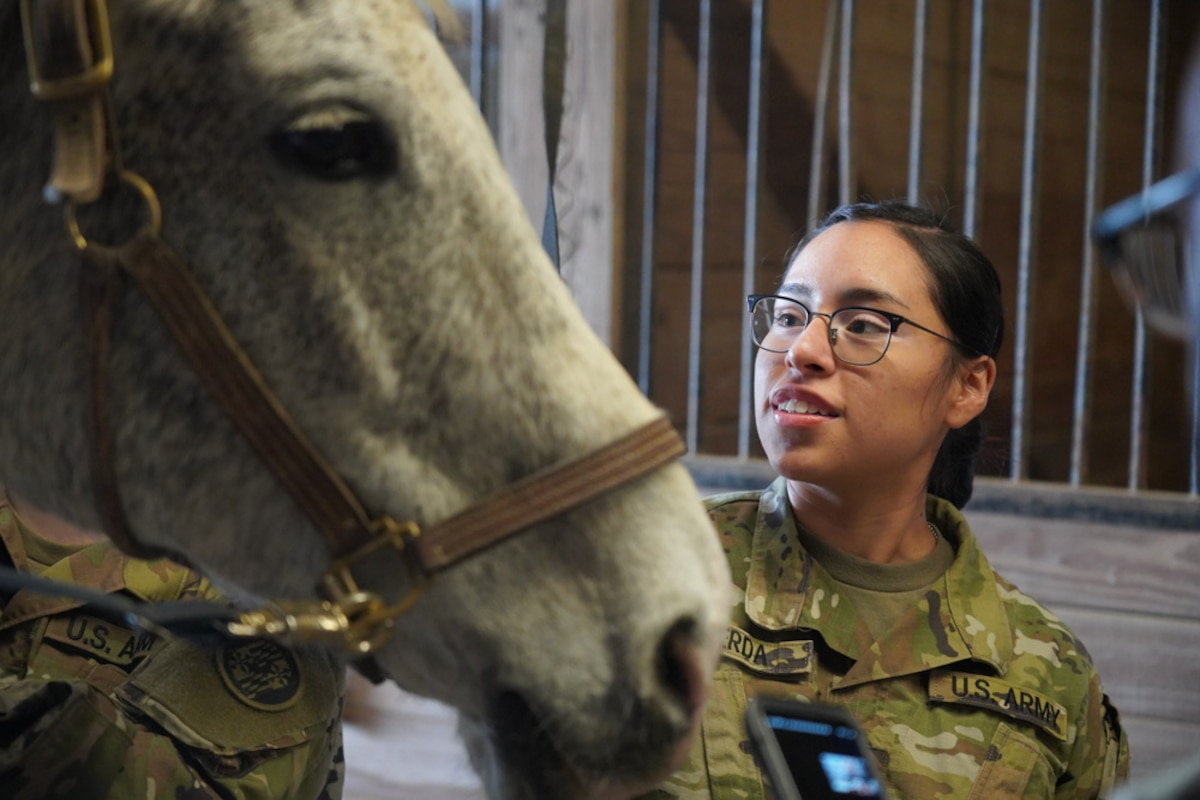 A soldier smiles as she looks at a horse.