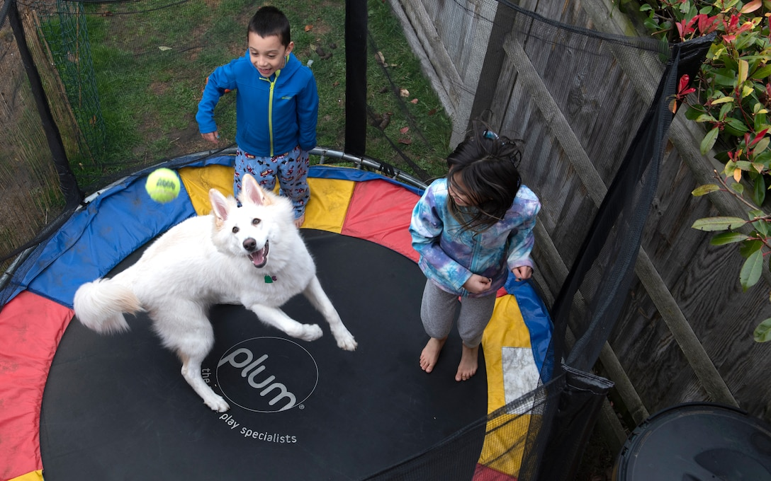 Nolan and Kaileena Nuñez play with Layla, their German Shepherd, on their trampoline while being quarantined for two weeks during the COVID-19 outbreak, April 2, 2020. The Nuñez children adhere to a structured schedule with time for school and play during their period of quarantine. (U.S. Air Force photo by Tech. Sgt. Emerson Nuñez)