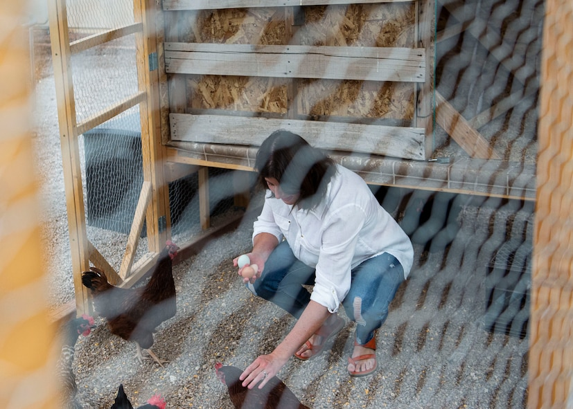 Rachael Thomas, collects eggs from her chicken coop to distribute to families in need during the COVID-19 Pandemic.