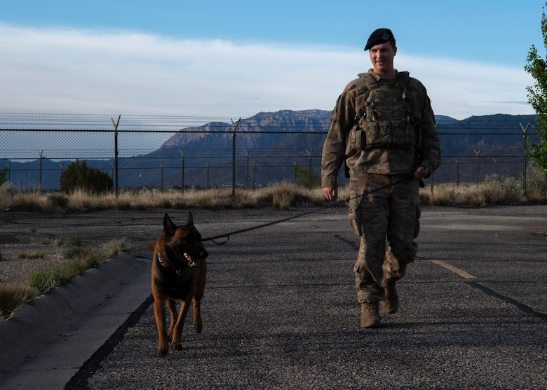 photo of dog walking with Air Force service member
