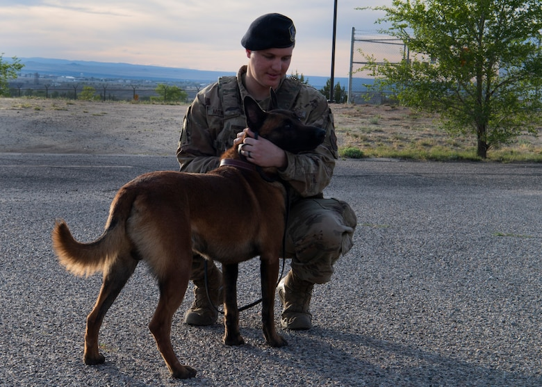 photo of dog and Air Force service member