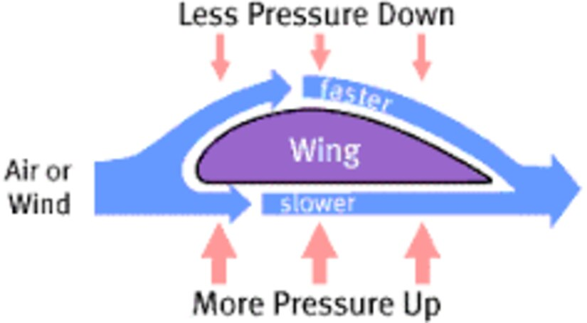 Bernoulli's Principle of Flight