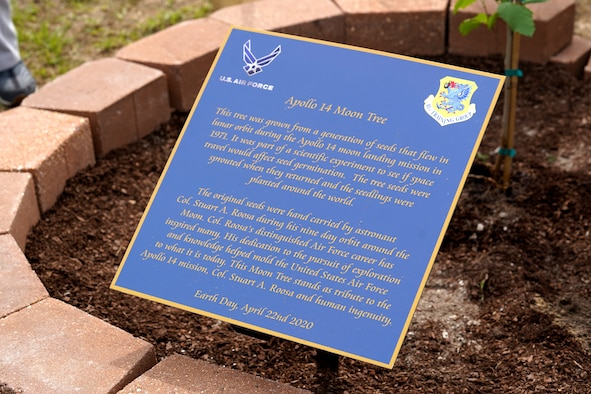 A sign is displayed during a tree-planting ceremony at Keesler Air Force Base, Mississippi, April 22, 2020. The tree was grown from a generation of seeds that flew with astronaut Col. Stuart A. Roosa as an experiment on mission Apollo 14. The tree was planted on Earth Day as a tribute to Apollo 14, Roosa, and human ingenuity. (U.S. Air Force photo by Airman 1st Class Seth Haddix)