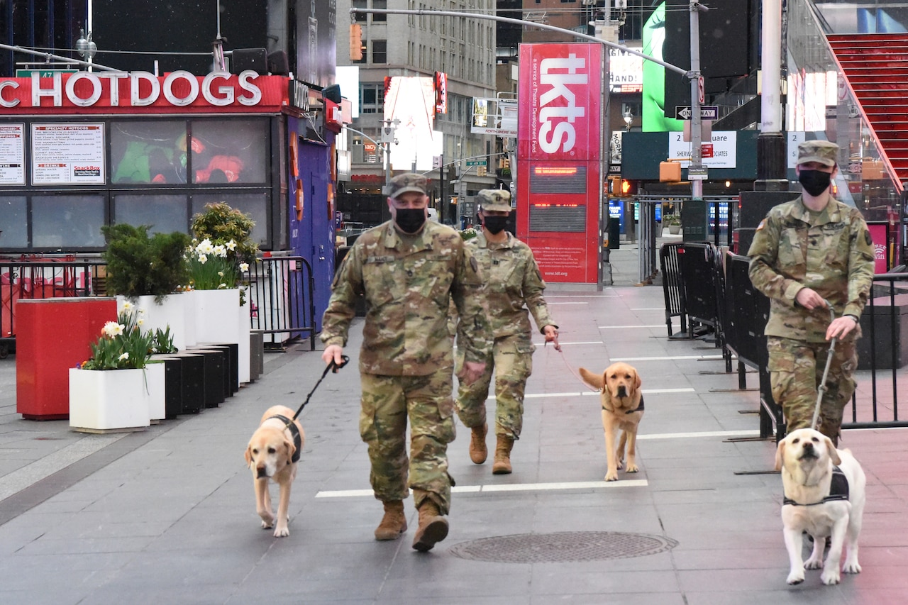 Soldiers walk three dogs on a city street.