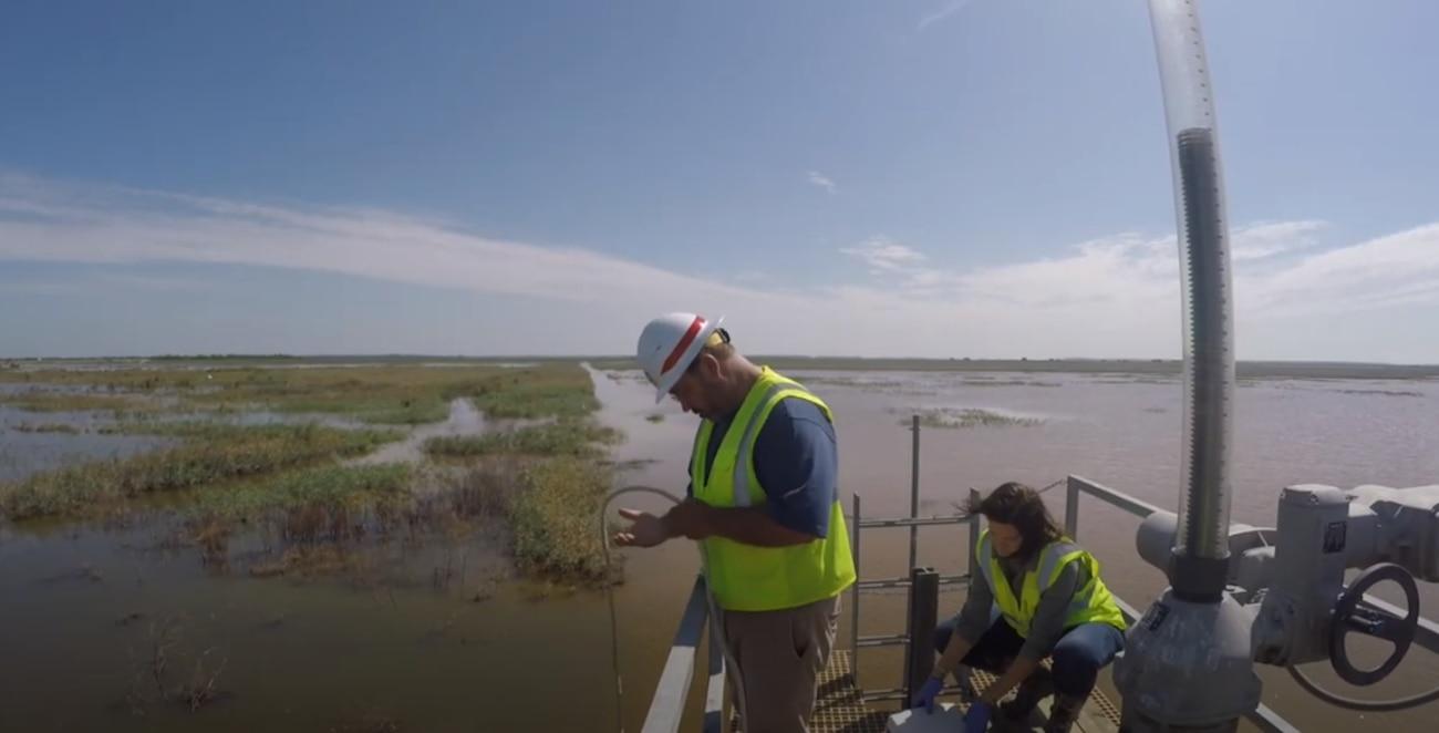 Quality Control - Protecting Savannah's Waterways