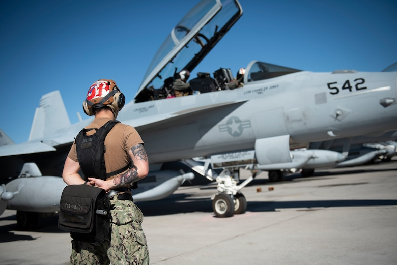 A U.S. Navy Airman prepares an EA-18G Growler for take-off.