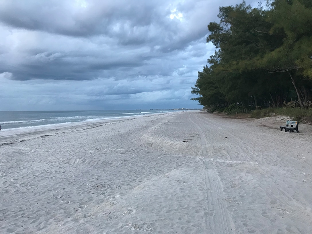 sandy beach with a tree on the upper right hand side