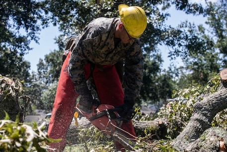 U.S. Marine Corps Lance Cpl. Christopher Geeraerts a motor transportation operator with 2d Tank Battalion, 2d Marine Division (MARDIV) clears fallen trees after Hurricane Isaias passed over Camp Lejeune, North Carolina, August 4, 2020. Marines and sailors from throughout 2d MARDIV came in support of base recovery efforts after the storm. (U.S. Marine Corps photo by Lance Cpl. Brian Bolin Jr.)