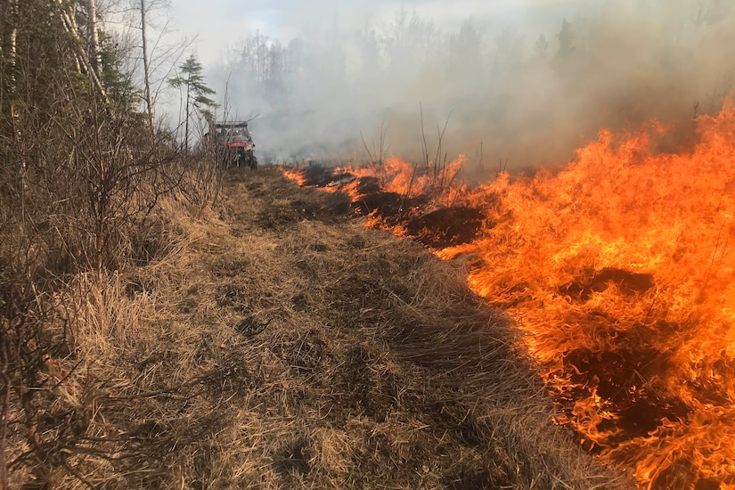 A fire burns along a line of brush. A firefighting vehicle is in the background.