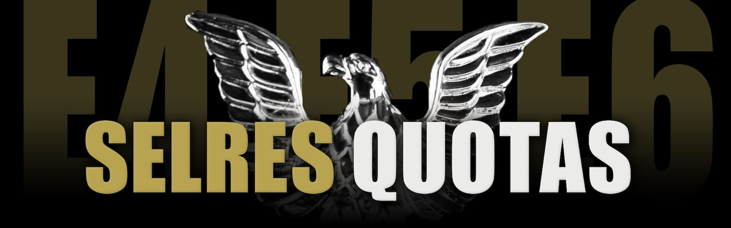 The words E4-E6 in gold superimposed over a black background with a silver chevron behind it.