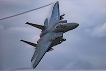 Profile photo of a U.S. Air Force F-15 in flight. (DOD photo)