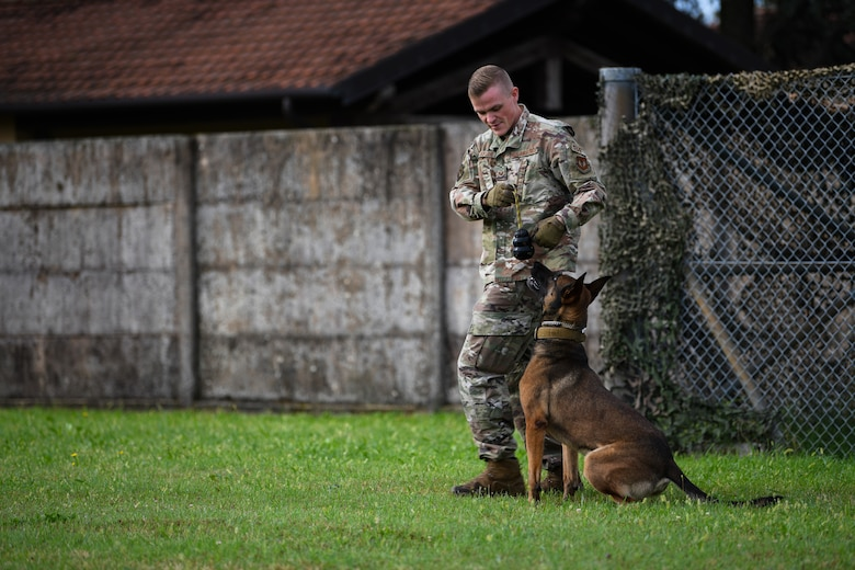 U.S. Air Force Staff Sgt. Jason Taylor, 31st Security Forces Squadron military working dog handler, and his K-9 counterpart, Ben, train at Aviano Air Base, Italy, Aug.18, 2020. MWDs are tasked with searching vehicles entering the base to search for illegal contraband. (U.S. Air Force photo by Airman 1st Class Ericka A. Woolever)