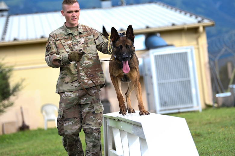 U.S. Air Force Staff Sgt. Jason Taylor, 31st Security Forces Squadron military working dog handler and his K-9 counterpart, Ben, train at Aviano Air Base, Italy, Aug. 18, 2020. Taylor trained Ben on centerline drills and obedience training, which prepares him for real world missions, such as locating explosives. (U.S. Air Force photo by Airman 1st Class Ericka A. Woolever)